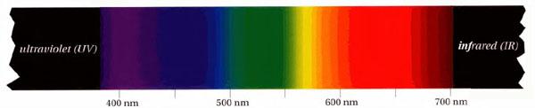 Spettro visibile
